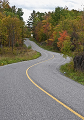 Twist in the Road (cjh44) Tags: autumn road curve colours yellowline trees