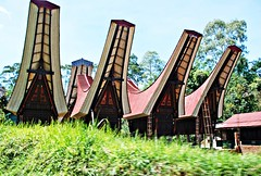 Houses in Toraja (diamonds_in_the_soles_of_her_shoes) Tags: toraja indonesia architecture teampilipinas