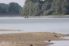 IMG_1826 (PURN MICHEL 49) Tags: lacderille etang lac