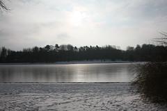 IMG_8405 (anthonywmthomas) Tags: tervuren parc winter landscape belgium