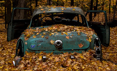 Mercury Forest (michael.mckennedy) Tags: car abandoned leaves fall autumn automobile mercury forest jericho vermont vt rustic antique