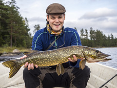 Stora Flosjon Eriks Gadda nr2 (Fredrik8812) Tags: omd olympus omdem10 olympusomd outdoor outdoors microfourthirds mft m43 friends fishing pike pikefishing portrait sweden scandinavia happy
