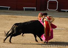 Farol de Luis Lpez en Acho (Vladimir Tern A.) Tags: toros corridadetoros bullfighting limaperu plazadetorosdeacho aficiones toreros bulls bullfighters rmacdistrict costumbres tradiciones arte cultura