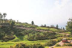 Sari Meadows, Pakistan (umayrshahid) Tags: sari meadows pakistan shogran green mountainside