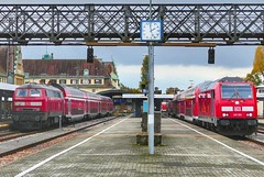 BR 218 vs BR 245 im Bahnhof Lindau  (holzi1156) Tags: dieselloks zug railway eisenbahn train br245 br218 instagramapp square squareformat iphoneography