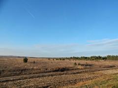 rostovskaya-oblast (Horosho.Gromko.) Tags: autumn field outside outdoors rostovregion russia sky tree        landscape