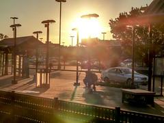 20161015-P1120475 (STC4blues) Tags: libertystatepark lightrail jerseycity