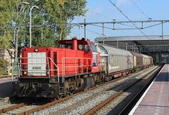 DBC 6508 'Karla' te Rotterdam CS (erwin66101) Tags: ns dbc db cargo deutschebahn dbs schenker diesel locomotief diesellocomotief karla electrolux alphen aan den rijn station rotterdam rotterdamcentraal rotterdamcs schuifwandwagens goederentrein goederen trein