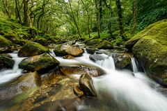Shaugh Prior (socreative) Tags: forest dartmoor england travel long exposure green trees national park water river landscape