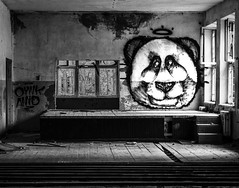 We love pandas! (Indiana Jules!) Tags: abandoned sowjet military base schwarzweis monochrome bw black white fuji xt1 kontrast schrfentiefe tiefenschrfe lost place forgotten rotten brandenburg deutschland indoor room