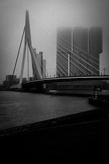 Rotterdam (1) (Hans Dethmers) Tags: rotterdam city koolhaas rem remkoolhaas derotterdam wilhelminakade erasmusbrug erasmusbridge blackandwhite zwartwit monochrome fuji mist