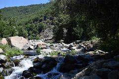 en el ro va (El recin llegado) Tags: chile bullileo cordillera ro river piedras agua trees arboles naturaleza
