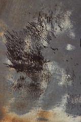 Ornithological Gathering (ebergcanada) Tags: abstract detail car carscapes rust arttrouv