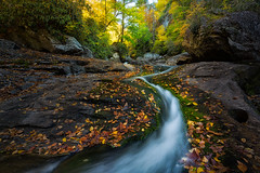 Cullasaja Zigzaging Beauty - 2250 (J & W Photography) Tags: 2016 appalachia appalachiamountains blueridgeparkway cullasajariver fall highlands jwphotography northcalorina sshapedflow westnorthcarolina autumn cascades colorfulleaves creek fallcolors gorge landscape nationalpark nature parkway trees waterfalls