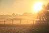 Brumes d'Or en Périgord (Damia Bouic) Tags: bergeracois creysse dordogne périgord aquitaine brouillard pécharmant