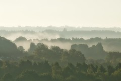 Misty Layers (jillyspoon) Tags: mist misty foggy layers canon70d 70d trees 70200mm autumn countryfile view mistyview morning early subphotographic