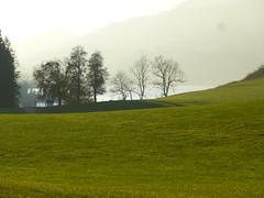 Herrliche Herbsttage im Allgu am Alpsee - Grnten (alpseecamping) Tags: allgu alpsse alpen herbst herbstferien herbsturlaub urlaub camping ganzjahres campingplatz hundeurlaub