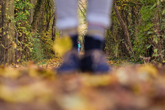Funny Side Effect (marionrosengarten) Tags: funny focus autumn leaves boots feet nikon remotecontrol