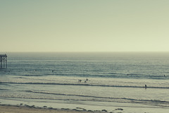 (JawshBeavz) Tags: san diego ucsd pacific beach socal california ca southern josh beavers photographer photography stock los angeles babe surf surfers ocean la jolla