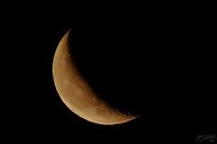 Morning Moon (fs999) Tags: 100iso fs999 fschneider aficionados zinzins pentaxist pentaxian pentax k1 pentaxk1 fullframe justpentax flickrlovers ashotadayorso topqualityimage topqualityimageonly artcafe pentaxart corel paintshop paintshoppro x9ultimate paintshopprox9ultimate luxembourg luxemburg ltzebuerg lune moon mond luna mound hdpentaxda560mmf56edaw da560 hdda dc 560mm