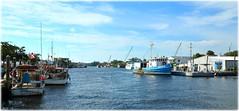 Tarpon Springs, Florida (lagergrenjan) Tags: tarpon springs florida sponge docks seafood festival boats