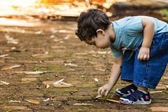 Curiosidade! (danielc_rc) Tags: infancia curiosidades menino arlivre hortoflorestal passeio natureza descobertas noscreens brincando filho