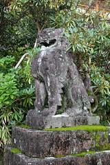 Nachi Grand Shrine 35 (Geoff Buck) Tags: japan shrine sacred buddhism buddhist temple buidling tree kumanokodo kumano nachi nachisan shinto worldheritagesite pilgrim pilgrimroute history worship statue statues carvings flags altar