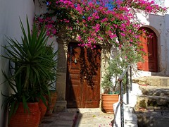 Facade with bougainvillea (Marite2007) Tags: lindos rhodes dodecanese greece house facade entrance gates doors architecture bougainvlllea pots day light pretty colorful