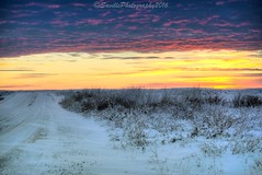 OCT_5259sW (savillent) Tags: tuktoyaktuk nwt nt northwest territories canada landscape sky sun arctic north snow ice climate december 2016