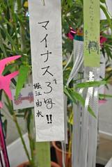 堀江由衣 画像
