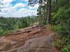 Algonquin Park - View from the Two Rivers Trail.jpg (Rock Steady Images) Tags: camping vacation ontario canada canon parks handheld 200views 50views algonquinpark topaz powershots100 25views bypaulchambers lightroom4 photoshopcs6 rocksteadyimages