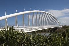 New Plymouth-Te Rewa Rewa Bridge (scrumpy 10) Tags: bridge newzealand nikon engineering aotearoa neuseeland d800 newplymouth jacqualine ozeanien scrumpy10 terewarewabridge