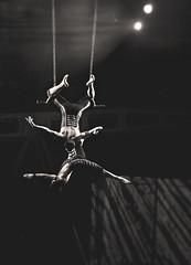 cirque trapeze [mono, 5] (thechelseagrin) Tags: blackandwhite monochrome mono blackwhite quebec circus monochromatic acrobat quebeccity trapeze cirquedusoleil blancetnoir villedequebec