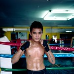 Filipino Boxer (Click on photo to see it larger and to it's full effect).