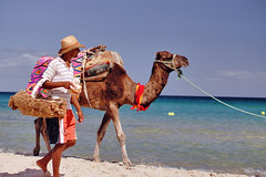 Walking with #camel (Andrey Velichko) Tags: africa blue boy sea summer portrait people beach water animals nice sand tunisia tunis resort exotic camel животные susse море мужчина прогулки верблюд веревка тунис дикаяприрода