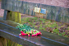 Memorial Bench (Boxing Day) (Mark Edwards2008) Tags: nov sep feb sept 18022012 18112000 28051920 12091931