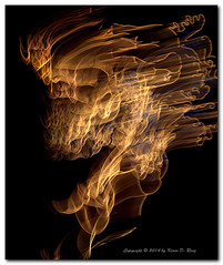 Rose of Fire (GlixPix) Tags: christmas light abstract newmexico color art colors beautiful beauty rose night outdoors lights interestingness interesting streetlight colorful nightlights nightshot streetlights dramatic albuquerque streetscene olympus timeexposure nightlight slowshutter neonlights abstraction nightsky nightscene drama lightshow e30 strobe fill topaz streetshot neonlight holidayseason lightsinmotion luminescent albuquerquenm biopark filllight albuquerquebiopark holidaydecoration riveroflight nightstreetscene olympuse30 glixpix kevindrenz zuiko1260mmf28ed kevinrenz kdrenz luminescentmotion