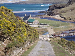 Dail House, Durness - Janet Roberts