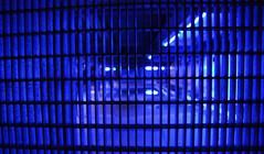 Blue Pool (offroadsound) Tags: blue pool azul grid stuttgart blues bleu blau gitter becken stadtbchereistuttgart stadtbibliothekstuttgart