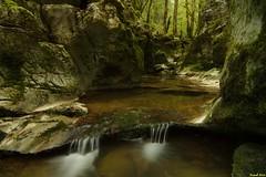 Mini Canyon en amont du Gour de Conche - Jura (francky25) Tags: de mini du canyon jura franchecomté gour doubs conche amont