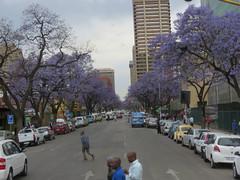 Downtown Pretoria