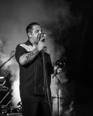 Alligator 2016 IV (EDU S.G.) Tags: rock rockabilly rockandroll maracas cantante singer concierto music musica live show festival blancoynegro blackandwhite nikon d300 jaen andalucia andalusia