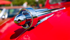 Studebaker pickup truck hood ornament (hz536n/George Thomas) Tags: riversidepark orphanscarshow 2016 cs5 canon canon5d ef1740mmf4lusm michigan september studebaker summer ypsilanti carshow chrome copyright nik ornament reflection truck red