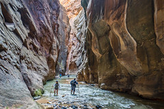 Hiking the Narrows, Zion NP (NEtrekker) Tags: canyon water river hiking narrows utah zion