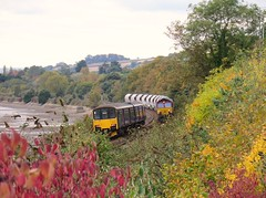 Shedding leaves.... (Stapleton Road) Tags: train locomotive railway class66 class150 teignmouth freight river teign autumn