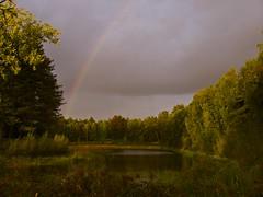 Lake in the backyard (Skylark92) Tags: belgie belgium urbex urban exploring villa mansion manor landhuis dilapidated vervallen lake water rainbow meer island eiland regenboog