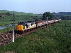 """37886 """"CF"""" R/F Metals at Thrimby Bridge / Little Strickland on the 05:48 Mossend - Llanwern Steel vans summer 1992 (37686) Tags: photo 1992 class 37 no 37886 at thrimby bridge wcml 1 heads the 0548 mossend llanwern freight service on west coast main line this location also seems to be called little strickland information supplied by photographer steel vans summer"""