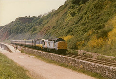 Another drag (seawall) Tags: class37 hstdrag 37673 teignmouth