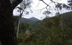 L963 Mt Darragh Road, Lochiel NSW