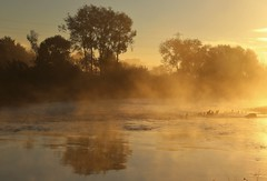 Mist over the river (matt.clark25) Tags: fog river exe riverexe morning dawn sunrise mist autumn cold orange pink rivers devon reflection reflections